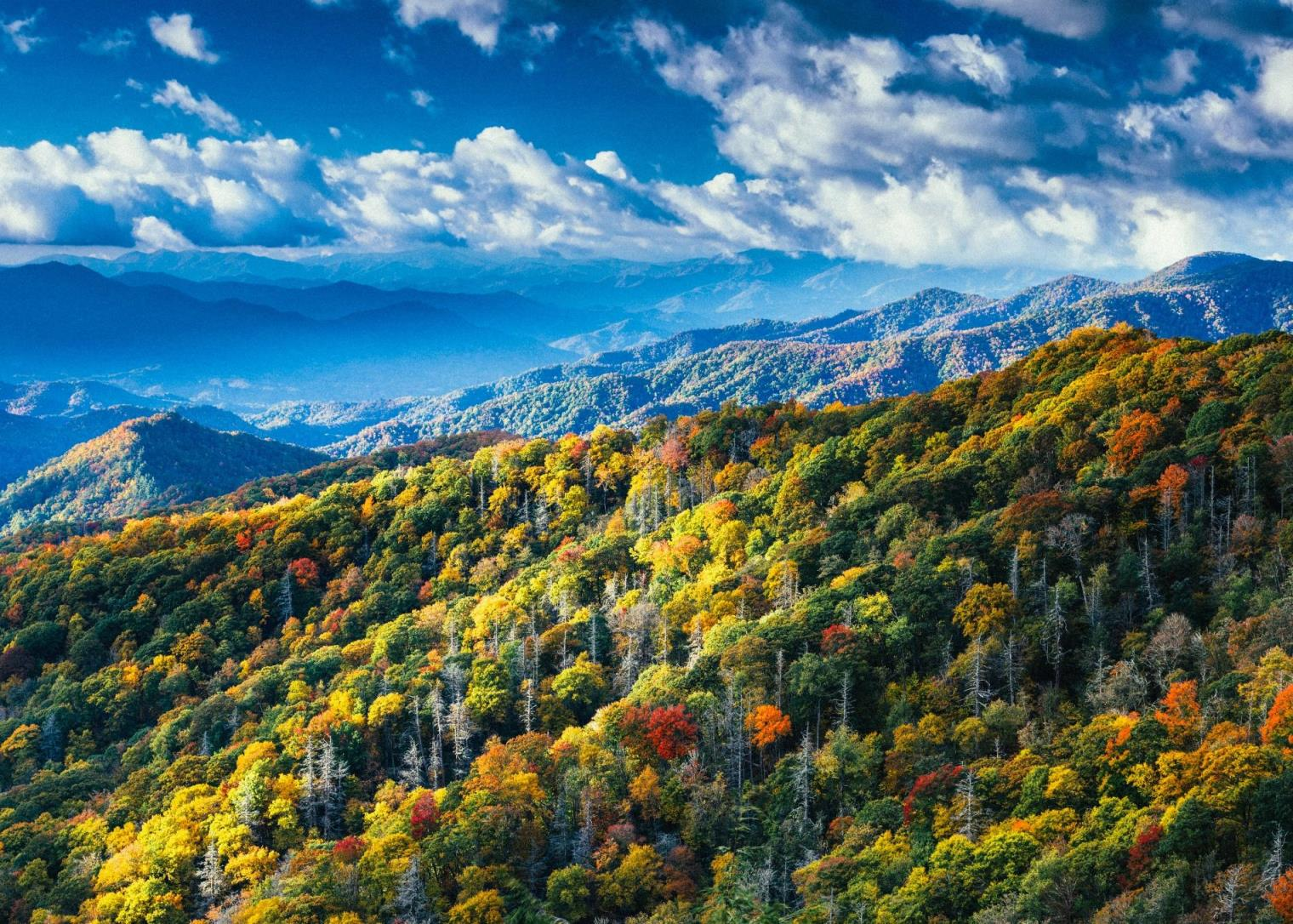 smoky-mountains-fall-colors
